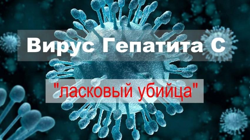 «Ласковый убийца». Так медики называют гепатит С